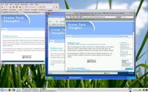 IE6 and Safari web browsers on Windows in Kubuntu Linux with QEMU